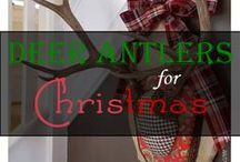 Holiday: Christmas Decor & Crafts