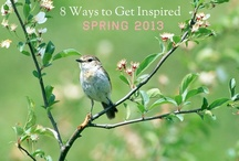 INSPIRED BY SPRING / Spring has sprung. Here are eight inspired ideas to celebrate spring and inspire you to think creatively. / by Shenay Shumake, Live Inspired.