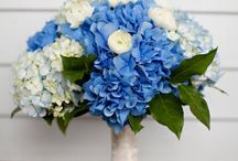 Wedding Ideas / by Blue  Creek Home Rhonda