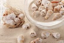 Seashells Decor  / Natural sea shells, sealife, seashell accents and decor from SeasideInspired.com / by Seaside Inspired Boutique