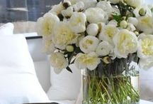 Decorating with Flowers / Flowers and plants add life to a room. Whether you use flowers from your garden or landscape or pick up a fresh bouquet from your local market. See ideas we love for using fresh flowers in your home decor. / by Seaside Inspired Boutique