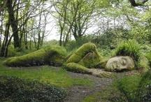 Gardening Ideas / by Kathleen Keenan