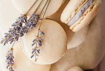 Color Crush ~ Lavender / The most delicate of purples.