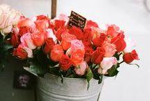{things I love} flowers