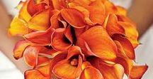 Bouquets - Orange