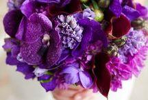 Bouquets - Purple