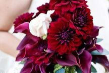 Bouquets - Red / by Sonia Sharma Events