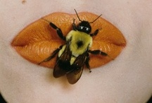Bees / Para Mi Papi! Love you, always will! / by Brenda Valencia-Reitano