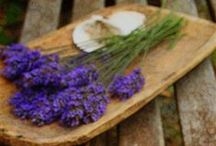 I Love Lavender / In It's Simplicity and Aroma