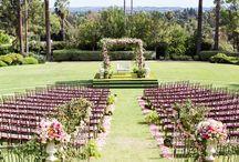 Lavish Garden