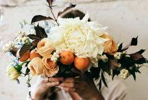 Wedding / by Jayne Glick