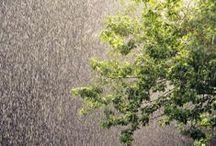 Let it Rain / Love the rain... / by Christina L Steele