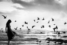 Photos que j'aime... / by Tina Defaud
