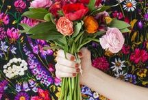 planting wishes and flowers / plants that look like fun to plant and pretty flowers
