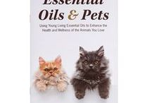 Essential Oils for PETS / I'm an animal lover, and my life and business are built around this.  This board is filled with awesome ideas for using Young Living oils to make your pet's daily lives better.
