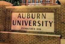 Its great to be an Auburn Tiger / by Sarah Davidson