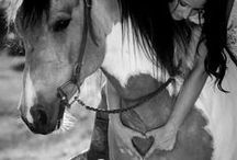 horse + girl photo session / by Rachael Niles