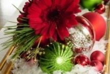 Christmas & New Years / by Jaime Eggleston