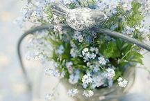 Colors ~ A Pale Shade of Blue