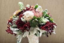 Wedding Ideas...