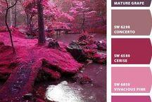 Colors:  Magenta, Fuschia and Pink