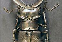 Bug / by Martha Hopkins Skarlinski