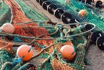 Colors ~ Turquoise and Orange