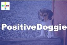 PositiveDoggie / Information from PositiveMed about keeping your doggie health! / by PositiveMed