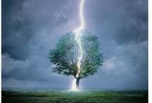 Mother Nature / I love storms / by Sheela Murthy