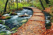 """wanderlust: an ode to Autumn / """"Season of mists and mellow fruitfulness!"""" John Keats"""