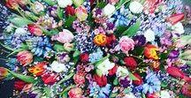 Rouwwerk van Fleurop bloemisten / Rouwwerk gemaakt door Fleurop bloemisten. Bij onze vakkundige bloemisten kun je met een gerust hart terecht voor rouwboeketten, rouwwerk en rouwstukken