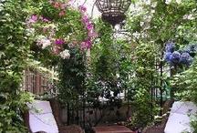 Garden Ideas/Outdoor Living / by Marcia McPherson Wingert