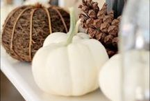 Fall / Fall Decor Ideas, Fall Party, Harvest Fest, Crafts and more!