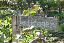In The Garden ~ Potagers / by Prim With Love