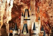 WDW / Magic Kingdom, Epcot, Hollywood studio's, Animal Kingdom, Blizzard Beach, Typhoon Lagoon and what not