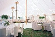 W E D D I N G • R E C E P T I O N / OUI WEDDING RECEPTION DINNER, DANCING, TENTS, AND MORE. . .