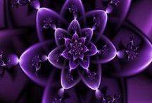 Purple / The colour purple. My favourite colour. Can be bright, sensuous, warm, funky, fun.