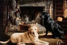 Hunting / by Jennifer Auer-Bradley