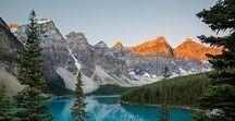 Landscape & Nature Photography / nature & wildlife photography