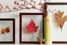 {Seasons} Autumn, Halloween & Thanksgiving