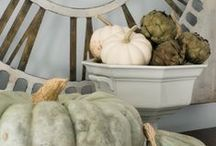 AUTUMN DECOR / Ideas for bringing the outdoors in this fall.
