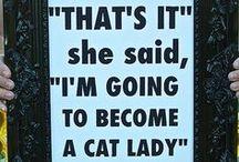 Crazy Cat Lady / by Stephanie Simons