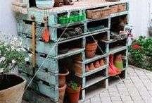 Gardening / Gardening ideas for the natural garden inspired room.