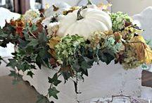 Seasonal and Holiday Decorating / #Decorating for the seasons #Fall Decorating #Christmas Decorating #SummerDecorating