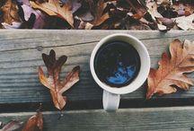 A U T U M N / Autumn is here!