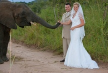 South Africa Weddings & Honeymoons