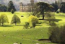 Loving Downton Abbey