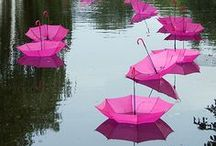 Paper Parasols / Umbrellas / by Kate Hickman