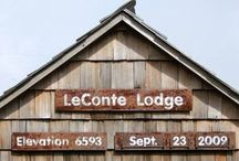 Mt LeConte  lodge GSMNP / by Micheal