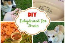 dog treats / Dog treats to make
